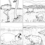 Coloriage d'animaux