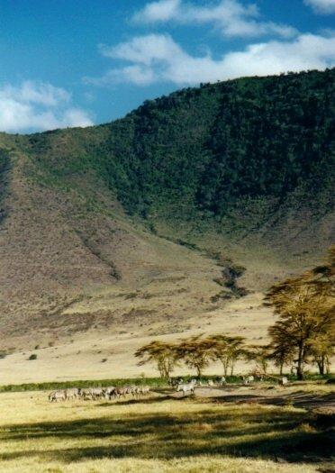 Vu au fond du Ngorongoro