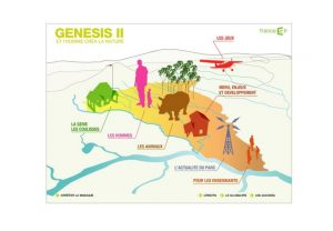 Mini site Genesis II