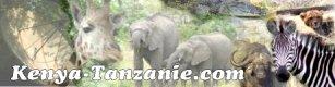Kenya-Tanzanie.com