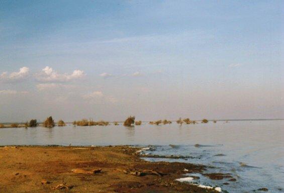 Parc de Manyara