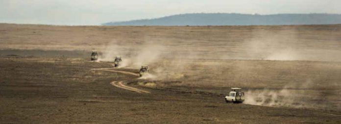 Bons plans en Tanzanie